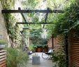 Sonnendach Garten Reizend Pin Von Berndine Jakobs Auf Terrasse