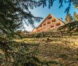 Spielplatz Garten Neu Ausstattung Nature Lounge Oberhauser Hütte Lüsen sommer