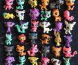 Spielzeug Garten Frisch Großhandel 5 Cm Q Pet Garten Set Spielzeug Lps Zu Q Pet House Littlest Pet Shop Puppe ornamente Von Lily Love $0 56 Auf De Dhgate