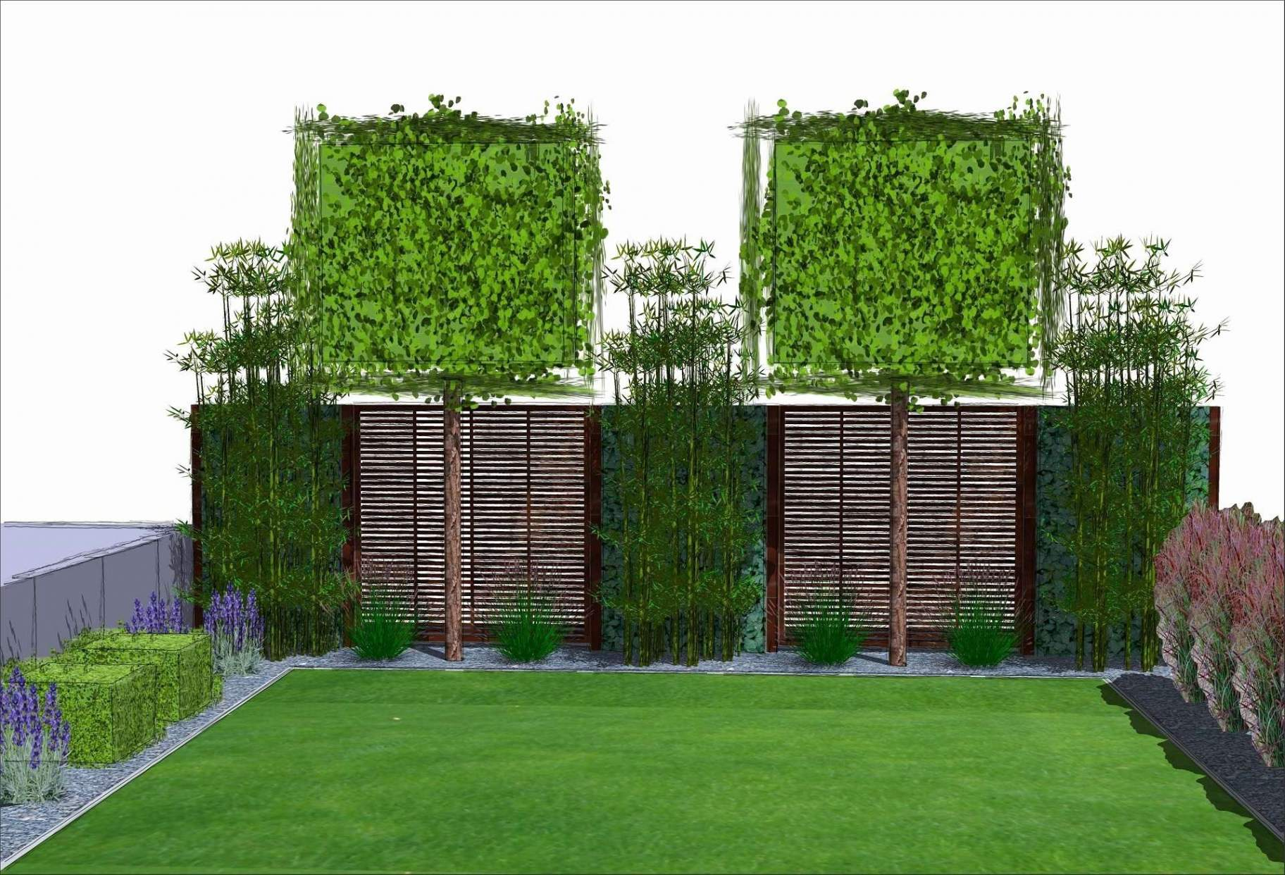 Stauden Fur Den Garten Reizend Hohe Pflanzen Als Sichtschutz
