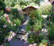 Steinmauer Garten Sichtschutz Gartendekorationen Elegant Gartengestaltung Bilder Sitzecke