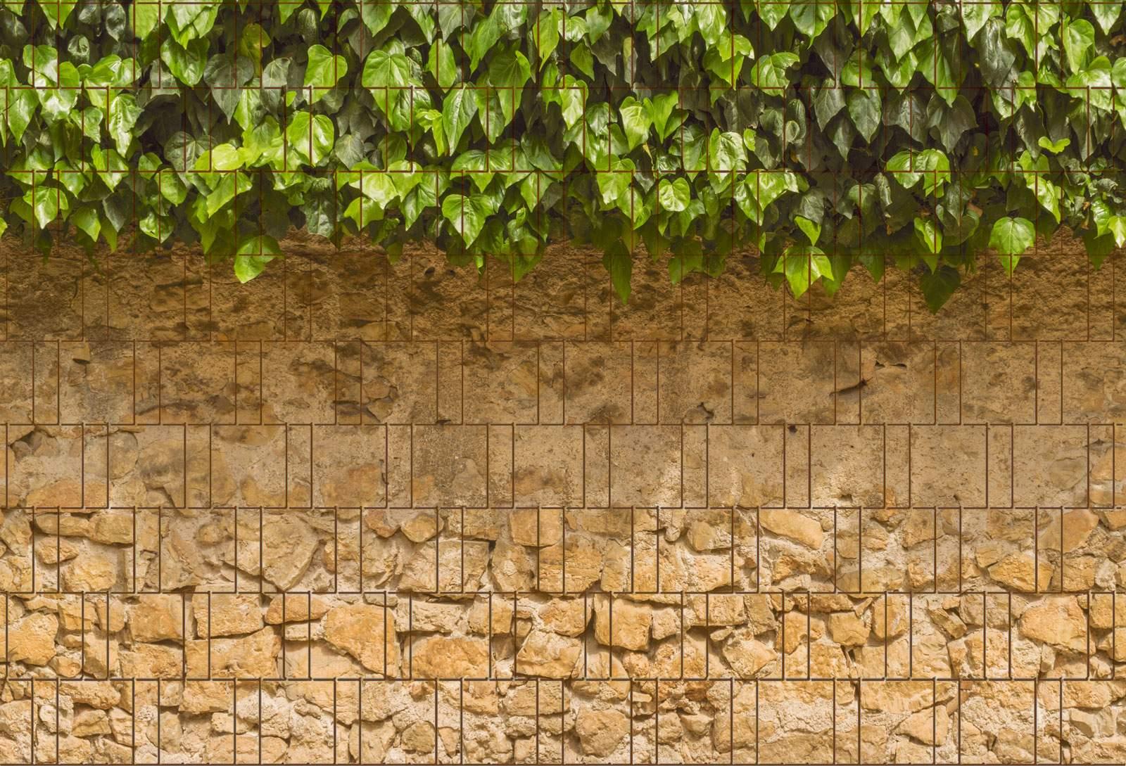 Efeu und Mauer Bedruckter Zaun Sichtschutz Streifen