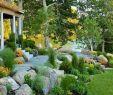 Steintreppe Garten Einzigartig 70 Wundervolle Vorgärten Für Landschaft