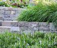 Steintreppe Garten Inspirierend Natursteinmauern Und Eine Lebendige Bepflanzung Der
