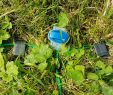 Stromkabel Im Garten Verlegen Inspirierend Rasenroboter Bereiche Des Rasens Mit Wechselschalter Zu