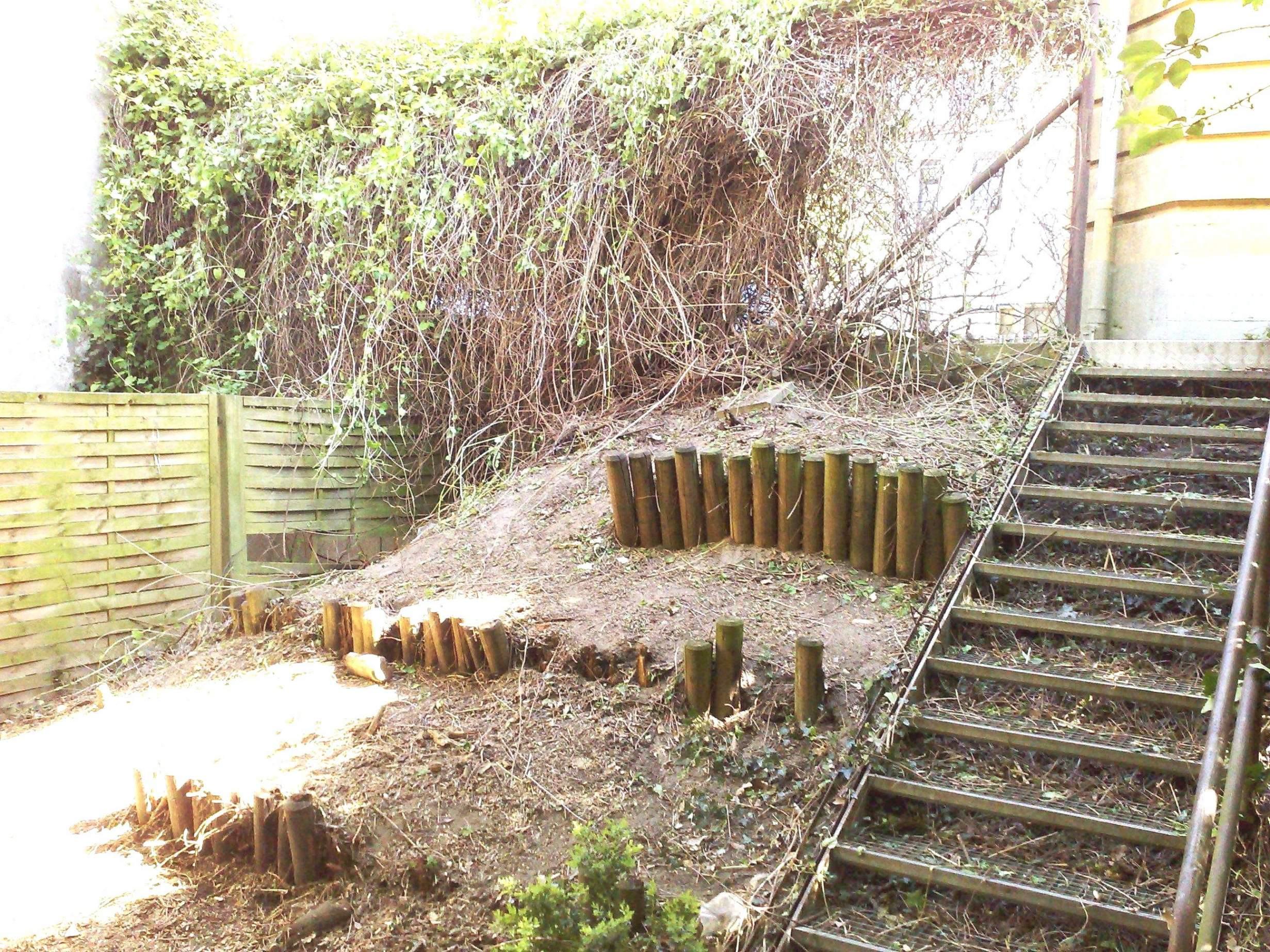 Suche Hilfe Im Garten Reizend Sichtschutz Garten Ideen — Temobardz Home Blog