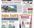 Thomas Philipps Onlineshop De Haus Und Garten Genial Der Gmünder Anzeiger – Kw 21 by Sdz Me N issuu