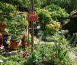 Tischdecke Garten Einzigartig Pflanztaschen Aus Wachstuch