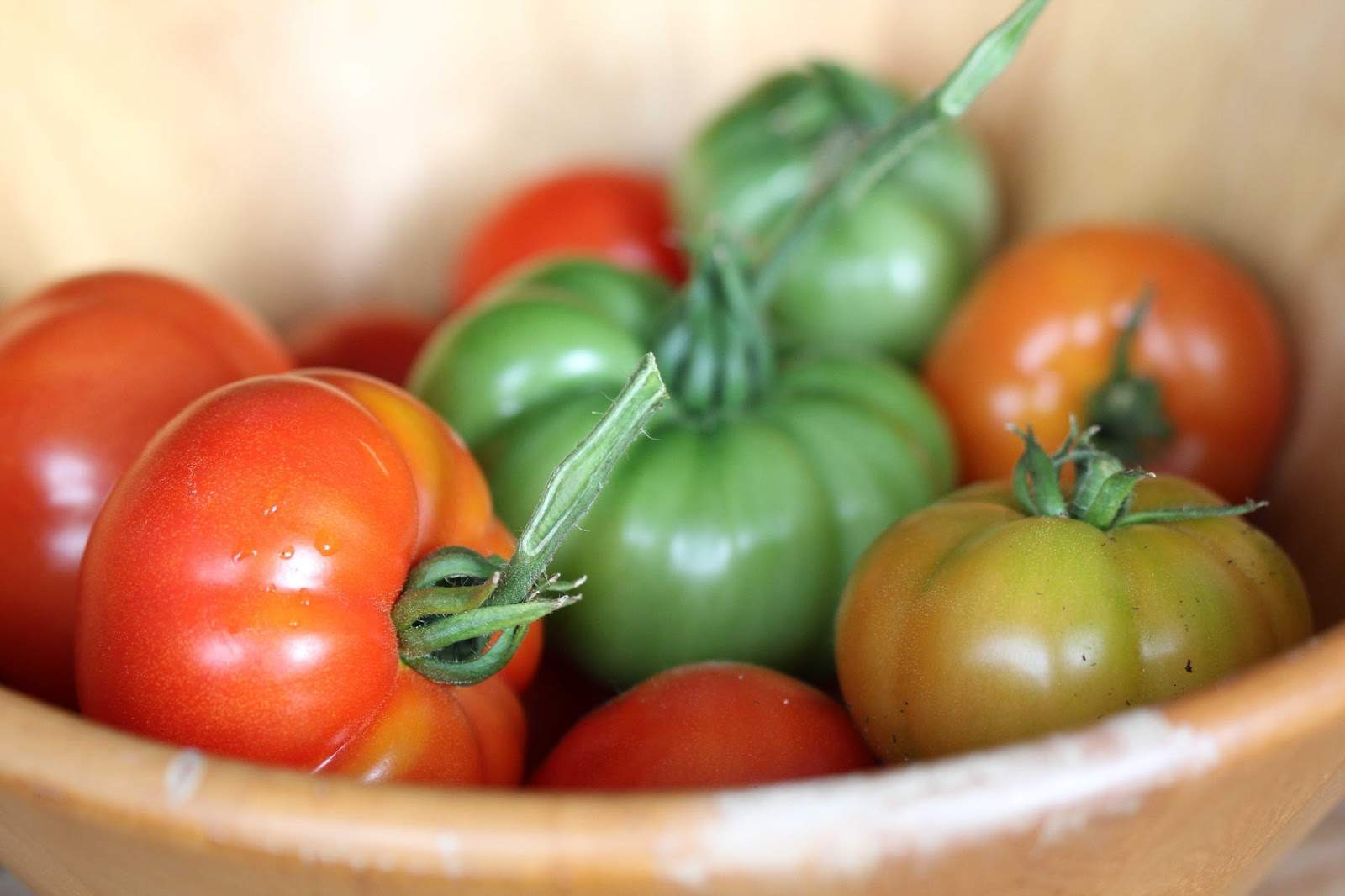 Tomaten Ernte Balkon JPG