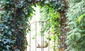 34 Reizend torbogen Garten Das Beste Von