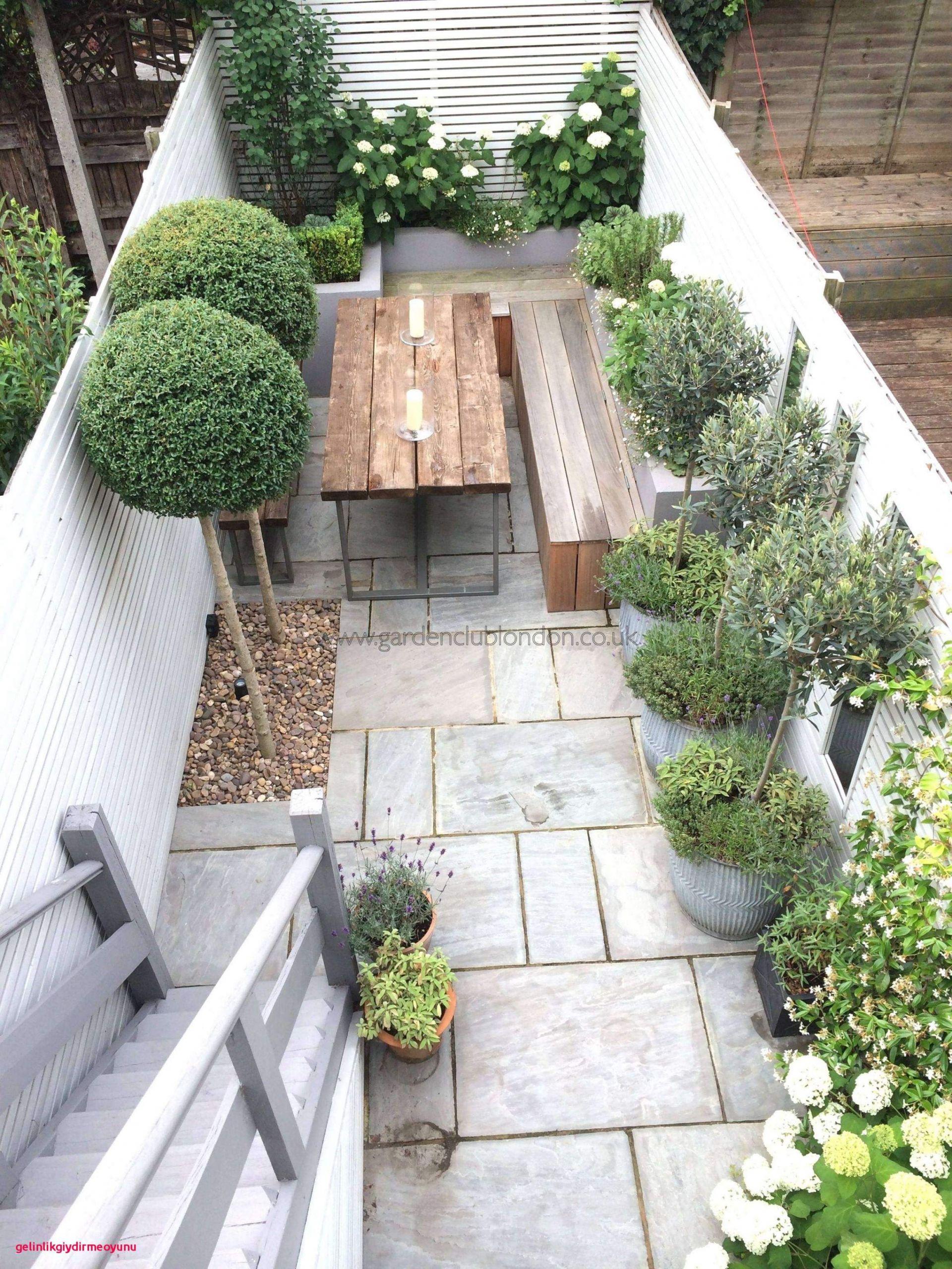 Trampolin Für Den Garten Neu Grosse Pflanzen Für Innenräume — Temobardz Home Blog