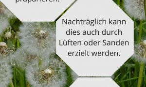 31 Elegant Unkraut Garten Frisch
