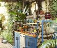 Upcycling Ideen Garten Frisch Decoratingkitchen