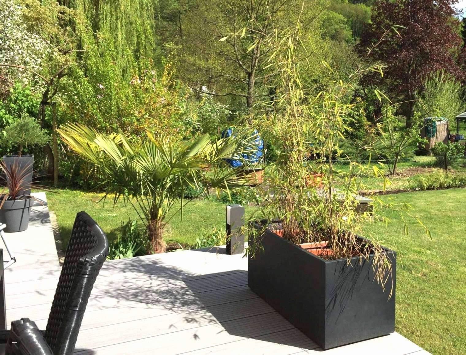 29 Schön Upcycling Ideen Garten Inspirierend