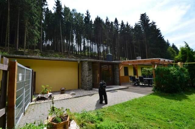 Urlaub Mit Hund Allgäu Eingezäunter Garten Inspirierend Ferienhaus Zita In Allrode Im Harz –
