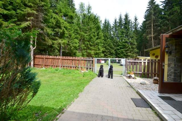 Urlaub Mit Hund Allgäu Eingezäunter Garten Neu Ferienhaus Zita In Allrode Im Harz –