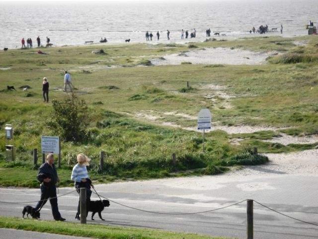 Urlaub Mit Hund Allgäu Eingezäunter Garten Neu Reiheneckhaus Mit Eingezäuntem Garten Für Urlaub Mit Hund