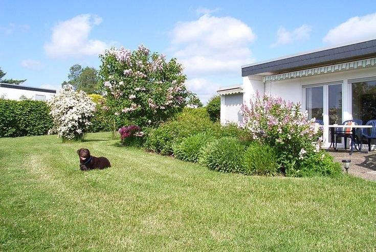 Urlaub Mit Hund Allgäu Eingezäunter Garten Reizend Ferienhaus Mit Hund Eingezäunter Garten