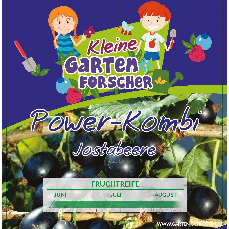 1 Jostabeere Power Kombi Kleine Gartenforscher Ribes Jostabeerei22gHEOcYhLGc