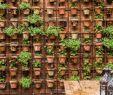 Vertikal Garten Einzigartig Pin Von Viola Kratofiel Auf Mein Gartentraum