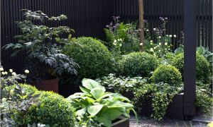 30 Elegant Vertikaler Garten Diy Neu