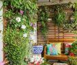 Vertikaler Garten Luxus 40 Terrassengestaltung Bilder Erneuern Sie Ihre Terrasse
