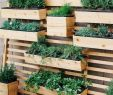 Vertikaler Garten Luxus 80 Creative Diy Vertical Garden Design Ideas