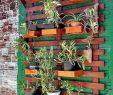 Vertikaler Garten Selber Machen Inspirierend Pin Von Ulis Garten Auf Home Wohnen