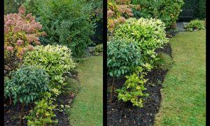 30 Frisch Verwilderter Garten Das Beste Von