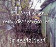 Verwilderter Garten Schön Die 173 Besten Bilder Von Wilder Garten In 2020