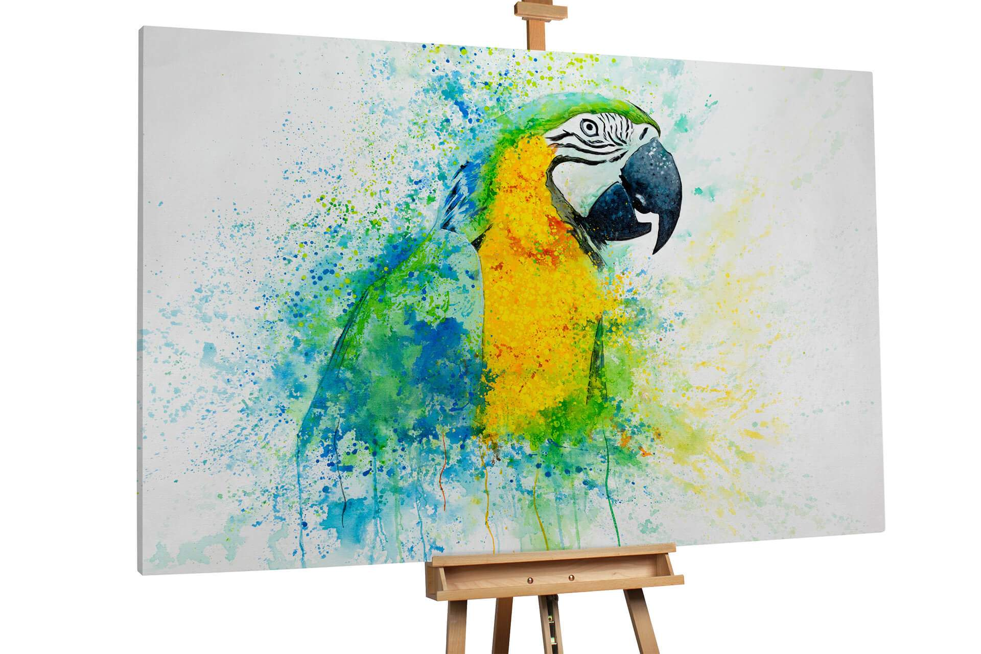 kl vogel papagei blau gelb gesang modern acryl gemaelde oel bild 02