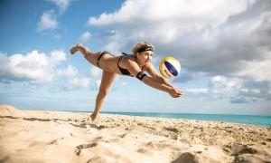 34 Schön Volleyballnetz Garten Inspirierend