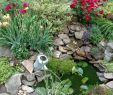 Wasser Im Garten Luxus Small Backyard Pond with Water Can Fountain