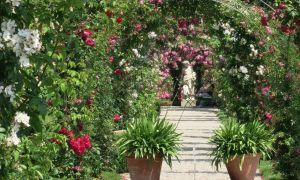 37 Schön Wasserbehälter Garten Reizend