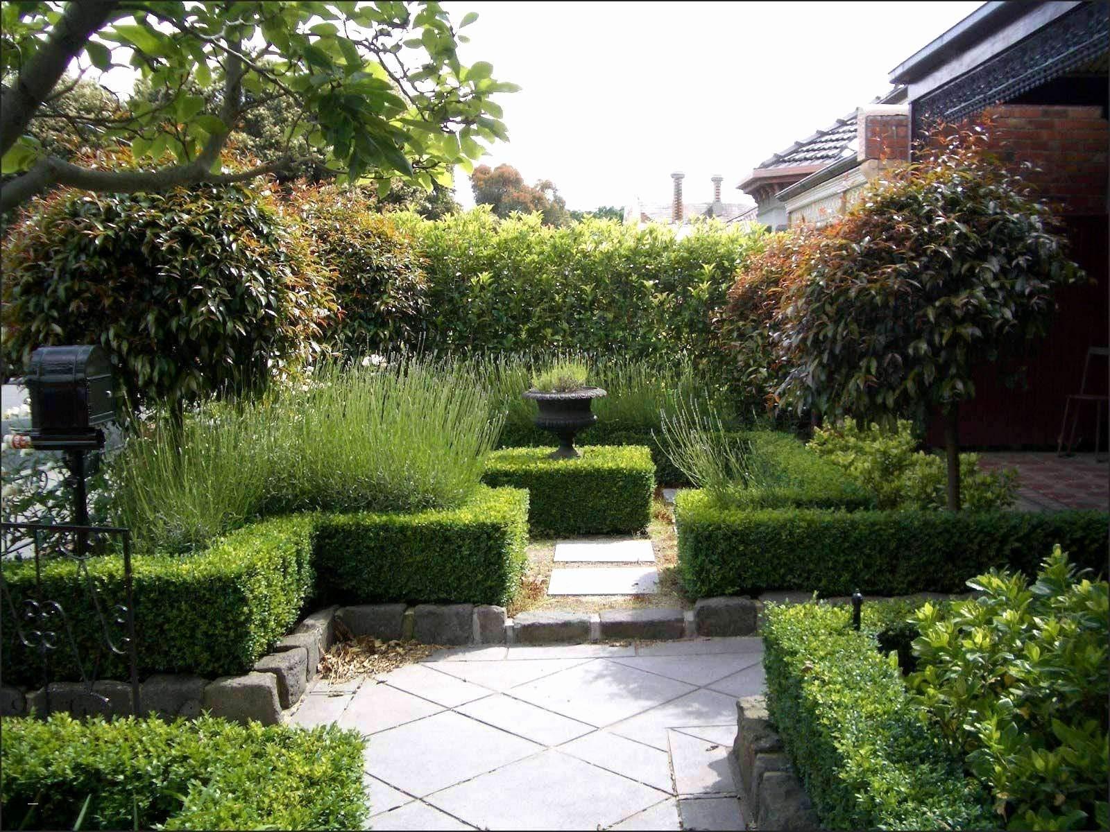 mini herb garden elegant 33 luxus wasserspeicher garten of mini herb garden