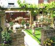 Wasserspiel Garten Modern Neu Gartengestaltung Großer Garten — Temobardz Home Blog