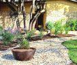 Wasserspiele Garten Edelstahl Luxus Gartengestaltung Mit Findlingen — Temobardz Home Blog
