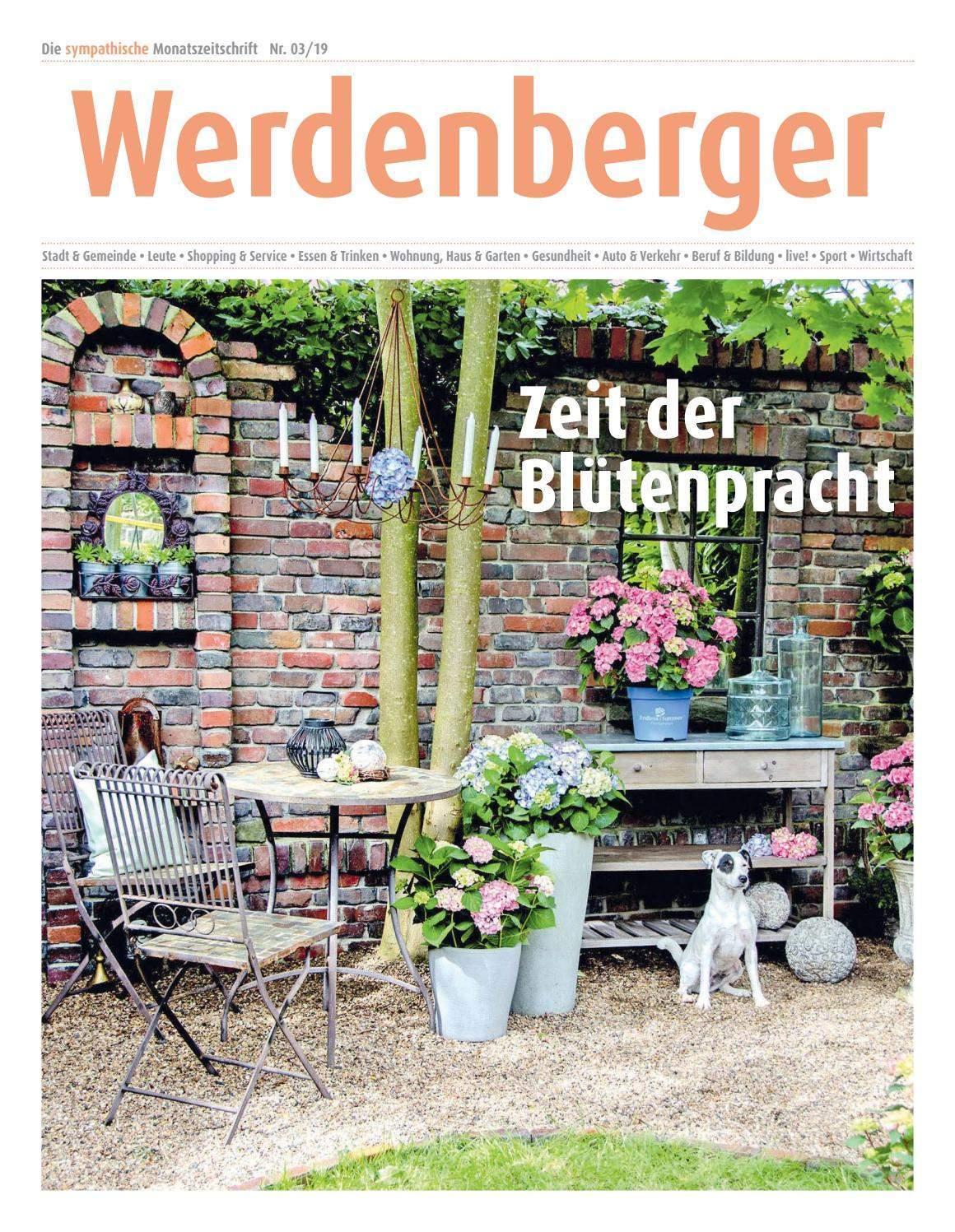 schallschutz garten selber bauen einzigartig werdenberger nr 3 19 april 2019 by lie monat issuu of schallschutz garten selber bauen