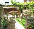 Wasserverbrauch Garten Inspirierend 31 Schön Beet Garten Einzigartig