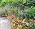 Weihenstephan Garten Das Beste Von Freising tourismus In Freising Tripadvisor