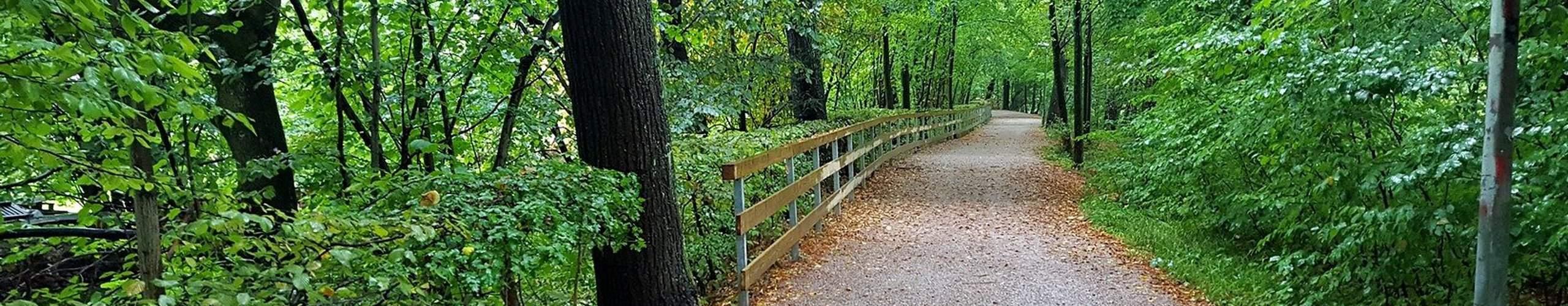 trail in freising
