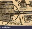Weinanbau Im Garten Frisch 00 19 Stockfotos & 00 19 Bilder Seite 192 Alamy