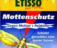 Wespennest Im Garten Luxus Delicia Mottenschutz Papier 2 Er