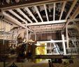 Wespennest Im Garten Luxus Gehöft Während Umbau Loft