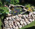 Whirlpool Für Garten Frisch Gartengestaltung Kleine Gärten — Temobardz Home Blog
