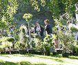 Wie Gestalte Ich Meinen Garten Luxus Ein Garten In Seiner Ganzen Blüte Kollektive Badische