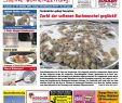Zeitschrift Wohnen Und Garten Einzigartig Inn Salzach Blick Ausgabe 43