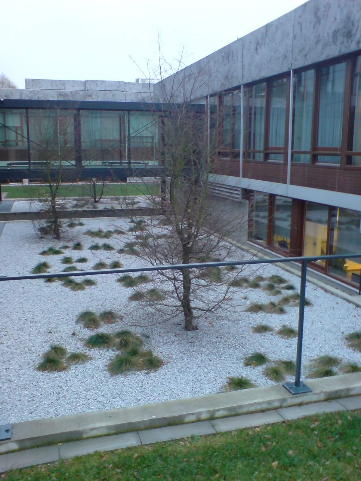 Zen Garden Constitutional Court