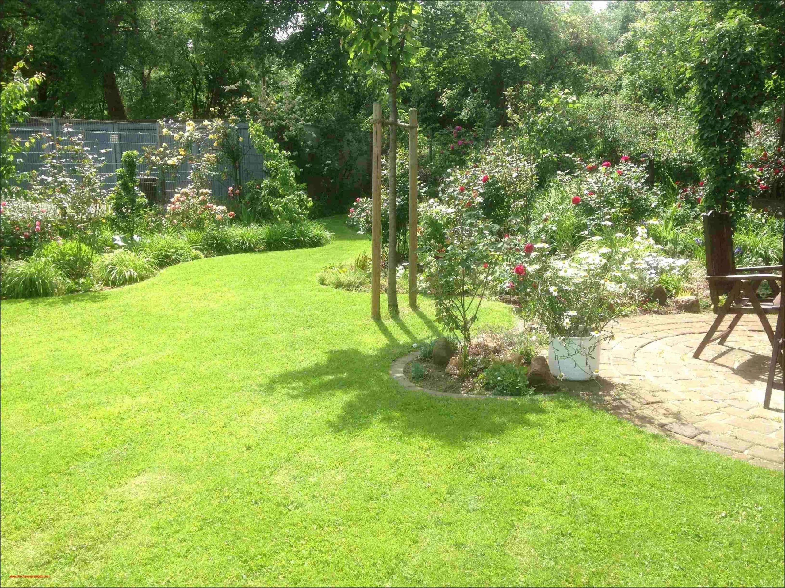 outdoor zen garden elegant 42 elegant zen garten anlegen galerie of outdoor zen garden