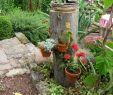 Ziergräser Für Den Garten Reizend Gartenarbeit Ideen July 2010